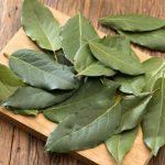 Daun-salam-gambar-merdeka.com_Myrtaceae