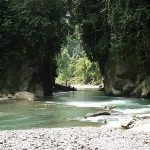 mount-leuser-national-park