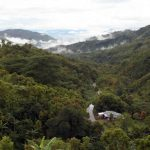 taman-nasional-bukit-dua-belas