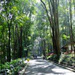 Taman Muara Angke