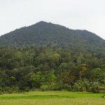 480px-Gunung-pulosari-1