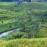 Sungai-Telaga-Waja