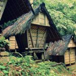 Baduy Cultural Conservation